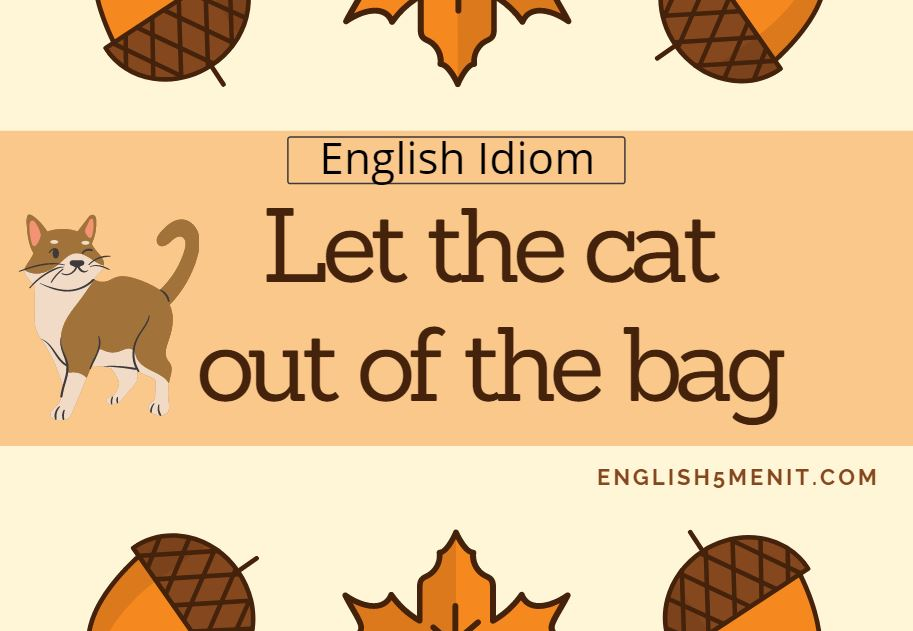 Let the Cat Out